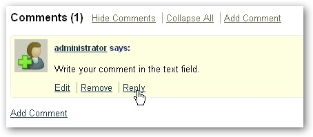 Add comments to a wiki page - CIT - Wiki nus